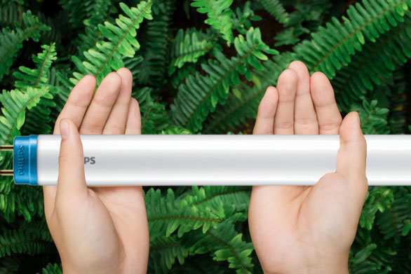 Đèn tuýp Philips Essential HO thân thiện với môi trường
